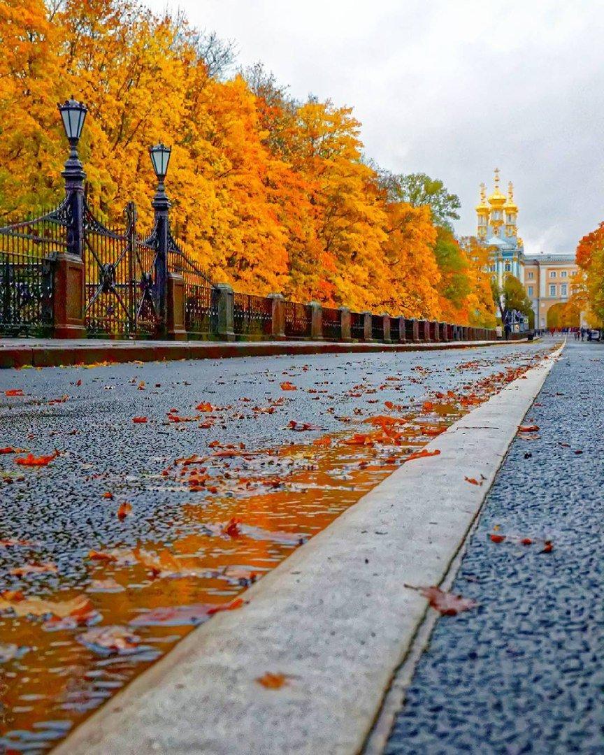 Волшебный Санкт-Петербург